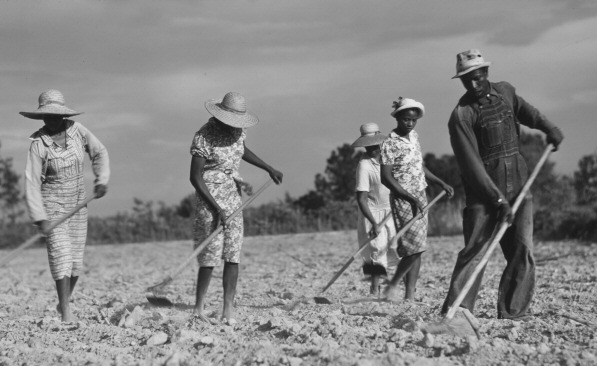 File:Sharecropping.png