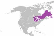 QI 1890 Quebec