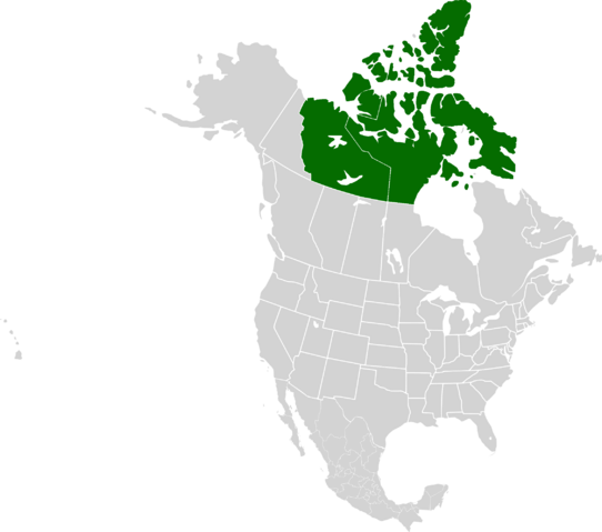 File:AMP Location of Canadian Republic.png