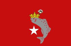 File:1983ddmanitoulinflag.png
