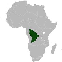 WestKongo Africa NW
