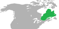 Quebec (King of America)