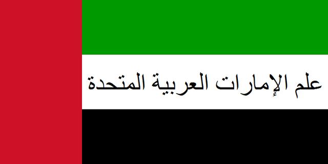 File:Flag 992.png