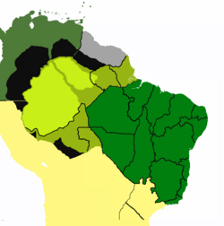States of Brazil 1905 PM3