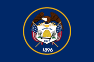 Flag 911