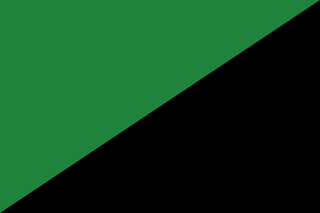 File:Green Army Flag.png