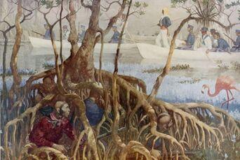 Seminole War in Everglades