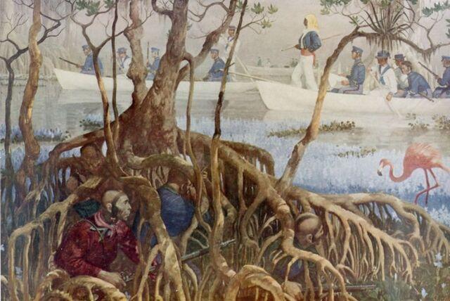 File:Seminole War in Everglades.jpg