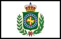 Flag Brasil PMII