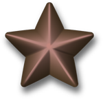 File:Bronze-service-star-3d.png