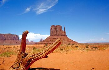 UTH Monument Valley (VegWorld)