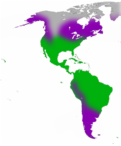 File:Racial Distribution of Slavery in the Americas.png