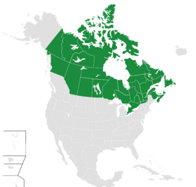 Map Canadien America Takes All lands Versiones