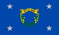 PEA flag image