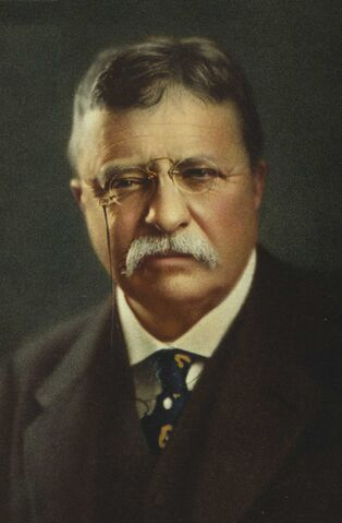 File:Theodore Roosevelt portrait.jpg
