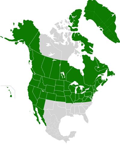 File:AMP Map of the United States of America VII.png