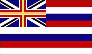 Flag Hawaii (VegWorld)