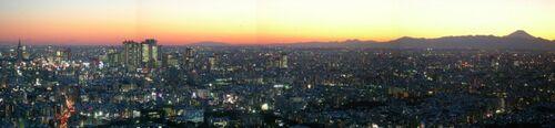 Nanking Panorama