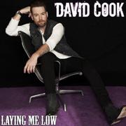 Davidcook-layingmelow