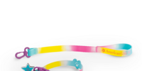 Rainbow Collar and Leash