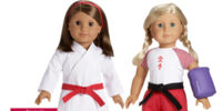 Karate Training Set