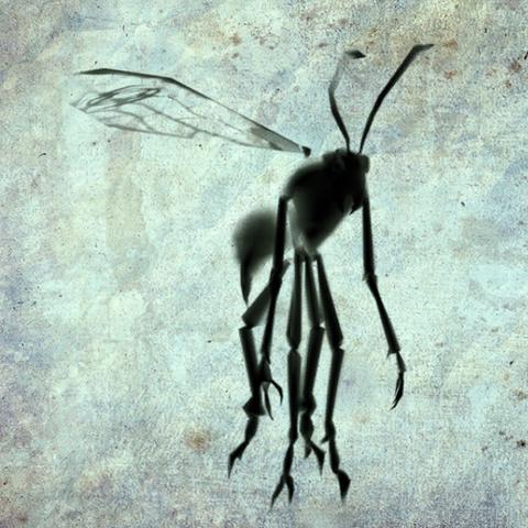 File:Samurai Ink Wasp render.png