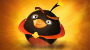 PowerbombBird