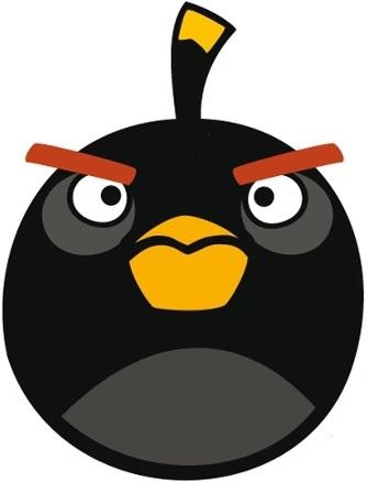 File:Black Bird Front.jpg