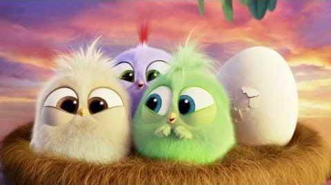 The Angry Birds Movie - The Hatchlings Thank You!