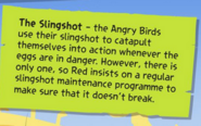 DidYouKnowSlingshot