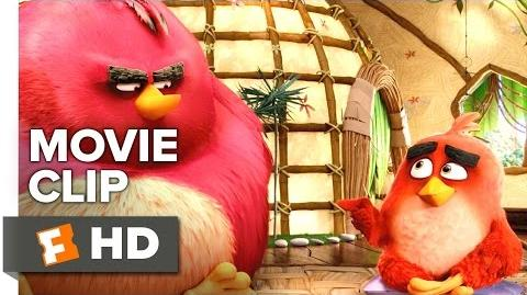 The Angry Birds Movie CLIP - Nice Chatting with You (2016) - Jason Sudeikis, Maya Rudolph Movie HD