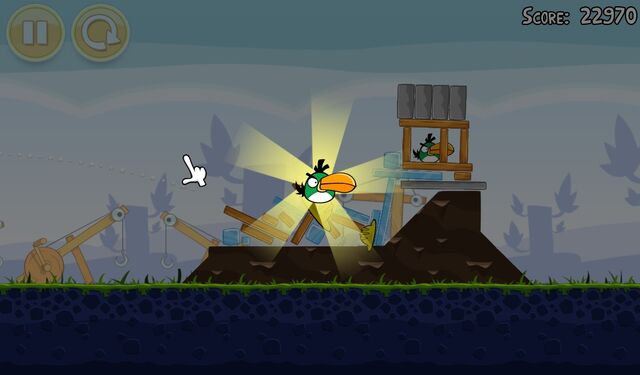 File:BoomerangbirdFreed.jpg