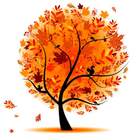 Quelle: Vignette.wikia (2016/10/30)