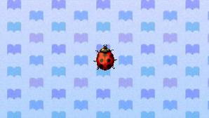 LadybugNL