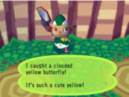Catching a yellow butterfly