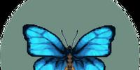 Emperor butterfly