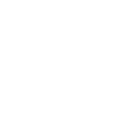 File:EagleSpeciesIconSilhouette.png