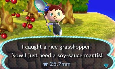File:Rice grasshopper autumn fall.jpg
