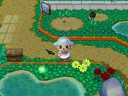 Animal Crossing wikia Pictures 210