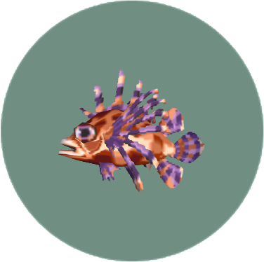 Zebra Turkeyfish (City Folk)