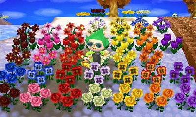 File:All Flowers.JPG
