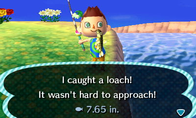 File:Loach new leaf.JPG