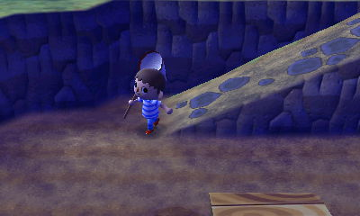 File:A male player holding a net in Animal Crossing: New Leaf.JPG
