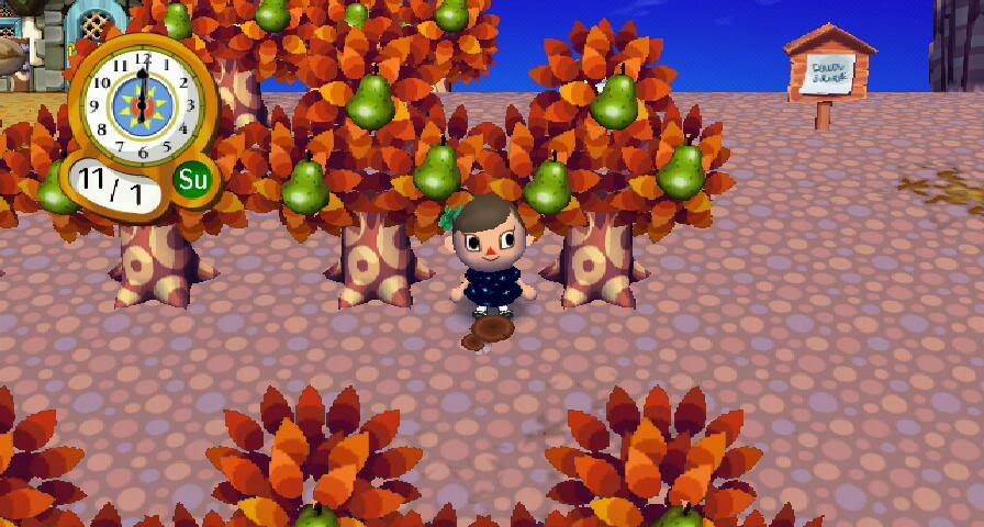 mushrooming season animal crossing wiki fandom powered by wikia - Halloween Animal Crossing City Folk