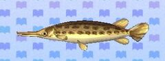 Gar encyclopedia (New Leaf)