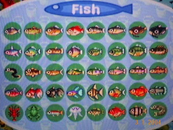 File:Complete Fish.jpg