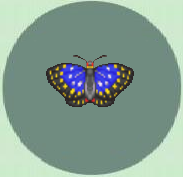 Purple emperor butterfly Animal Crossing
