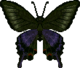 Peacock Butterfly (City Folk texture)
