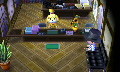 File:TownHallIn.png