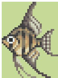 File:Angelfish (Wild World).png